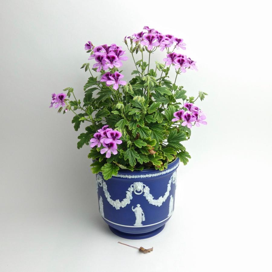 Dark blue jasper jardiniere