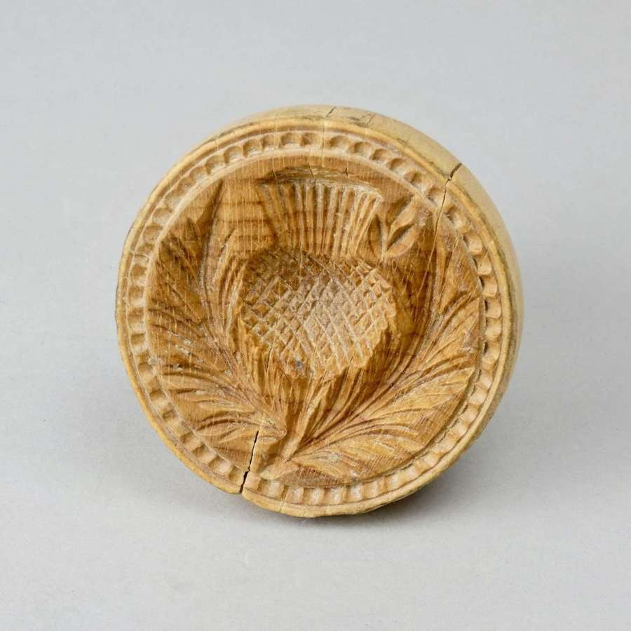 Sycamore print carved with a thistle
